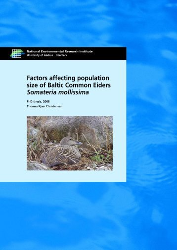 Factors affecting population size of Baltic Common Eiders Somateria ...