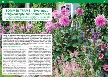 SOMMER-TRAMS – Zwei neue Fertigkonzepte für Sommerbeete