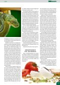 Dissertationen 2007 - VET-MAGAZIN.com - Seite 7