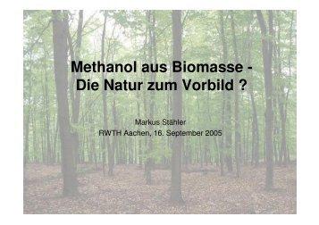 Methanol aus Biomasse - Lehrstuhl für Brennstoffzellen der RWTH ...