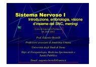 Sistema Nervoso I - Farmacia - Università degli Studi di Siena