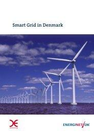 open Smart Grid in Denmark - Energinet.dk