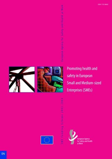 Promoting health and safety in European Small and Medium-sized ...