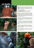 WWF en la Cuenca del Congo - Page 2