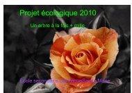Projet écologique 2010