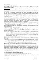 Geel Pionneke Pagina 1 Jan Steurs 28/07/2009 LAMM BADA
