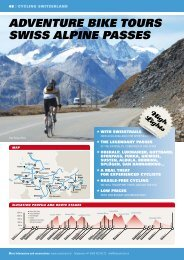 adVEnTurE bikE TourS SwiSS alpinE paSSES - Swiss Trails