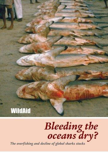 Bleeding the Oceans Dry - WildAid