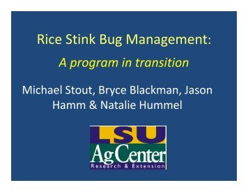 Rice Stink Bug Management: - Louisiana Agricultural Consultants ...