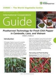 Postharvest Technology for Fresh Chili Pepper in ... - AVRDC