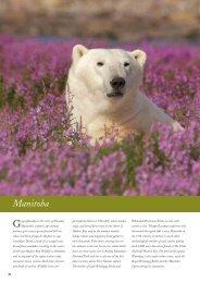 Manitoba - Audley Travel