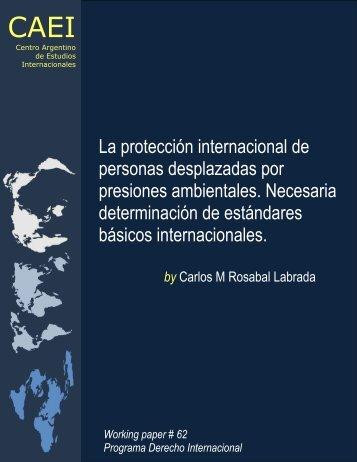La protección internacional de personas desplazadas por presiones ...