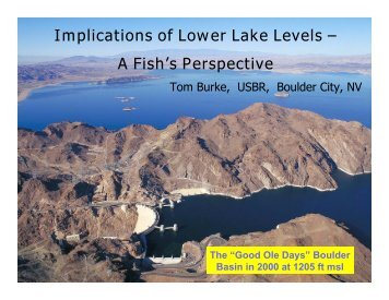 Implications of Lower Lake Levels – A Fish's Perspective