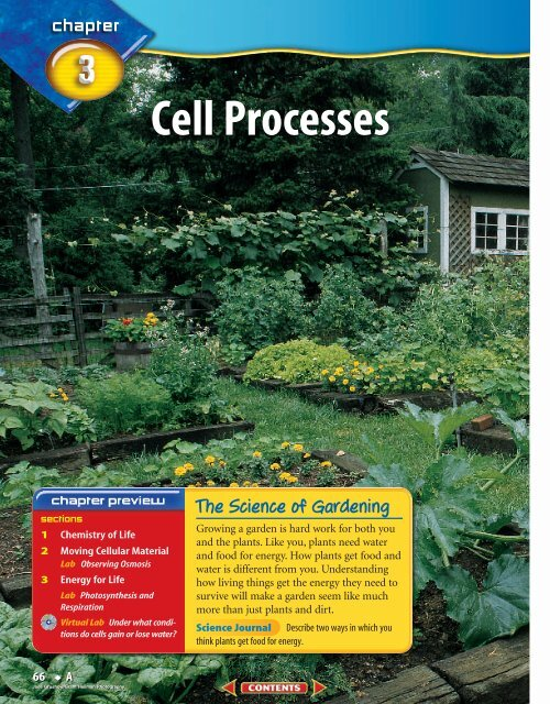 A Chapter 3 Cell Processes McGraw Hill Higher Education