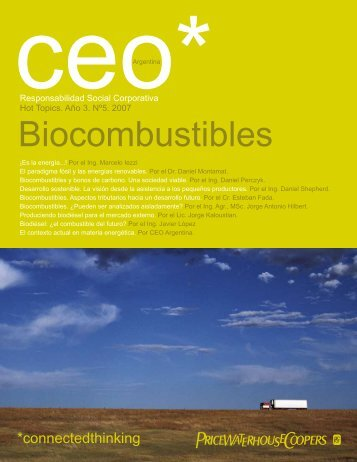 Biocombustibles - PwC Argentina