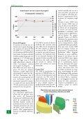 25 GIUGNO - Anaborapi - Page 6