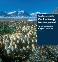 Forskningsstation Zackenberg i Nordøstgrønland – ti års ...