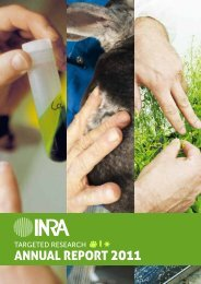 INRA's Annual Report for 2011 - French National Institute for ...