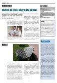 Radbode - VMS Veiligheidsprogramma - Page 2