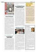 Radbode - VMS Veiligheidsprogramma - Page 4