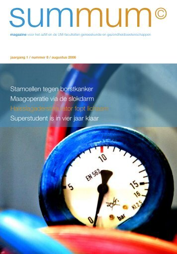 8 - academisch ziekenhuis Maastricht