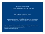 Economic Issues of Carbon Sequestration and Trading