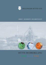 Umwelt-, Gesundheit- und Arbeitsschutz (Flyer) - Dillinger Hütte GTS