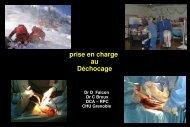 Prise en charge au DCA - Secours-montagne.fr