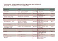 Dokument-Download: Veröffentlichung vergebener ... - Stadt Dillingen