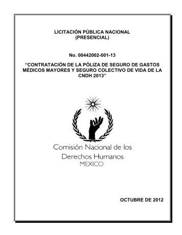 LICITACIÓN PÚBLICA NACIONAL FORMATO