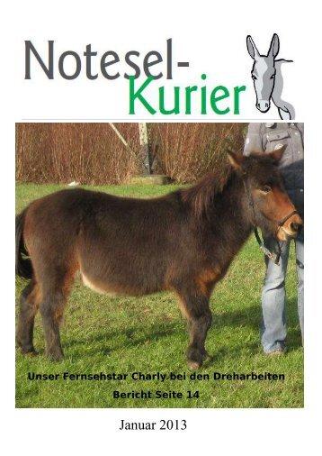 Januar 2013 - Noteselhilfe