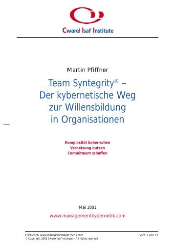 Team Syntegrity - Pfiffner - Das Cwarel Isaf Institute