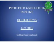 PROTECTED AGRICULTURE IN BELIZE. HECTOR ... - CEDAF
