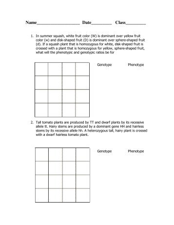 Dihybrid Cross worksheet