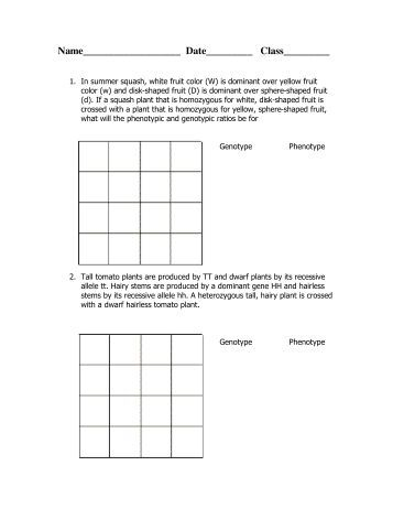 Printables Dihybrid Cross Worksheet Answers dihybrid cross worksheet pea plants intrepidpath crosses triton science worksheet