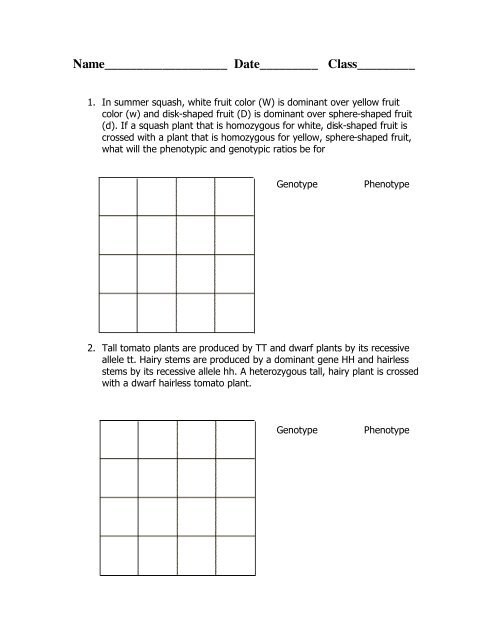 Bestseller: Chapter 10 Dihybrid Cross Worksheet Key