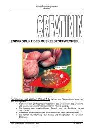 endprodukt des muskelstoffwechsel - Medizinisches Labor 08-11's ...