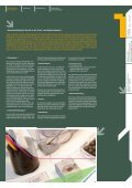 kerschensteinerschule - Branddesign, Daniel Brand - Seite 5
