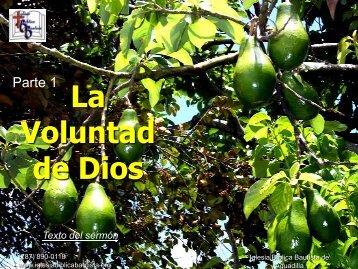 La voluntad de Dios, parte 1 - Iglesia Biblica Bautista de Aguadilla ...