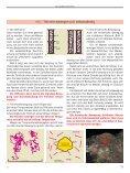 Vom Aufbau der Körper Eigenschaften von Körpern - Page 6