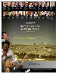 2011 DPPJ Flyer Hungarian
