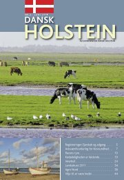 SDM BLADET - Dansk Holstein