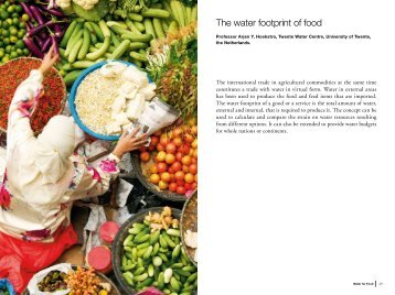 The water footprint of food