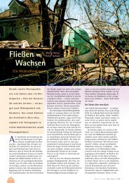 Fließen – Wachsen - Hagia Chora Journal