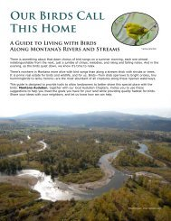 Our Birds Call This Home - Montana Association of Conservation ...