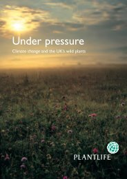 Under pressure – climate change and the UK's wild plants - Plantlife