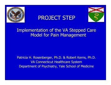 Implementation of the VA Stepped Care Model of Pain Management