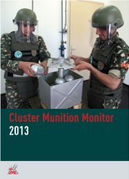 Download PDF - Landmine and Cluster Munition Monitor
