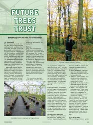 FUTURE TREES TRUST - Forestry Journal
