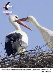 Storch Schweiz · Cigogne Suisse Bulletin 2012 / 2013 Nr. / No 42